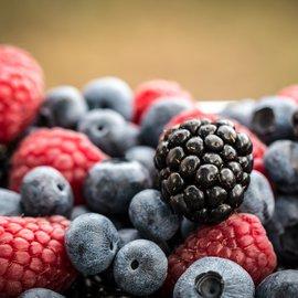 Lesní ovoce